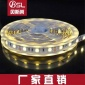 全彩5050LED灯带  套管防水 热缩透明管  滴胶防水 5050RGB灯带